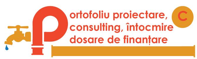 portofoliu-consulting